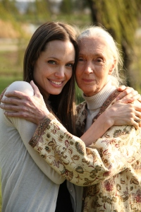 Jane Goodall and Angelina Jolie